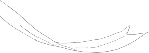 リボン装飾